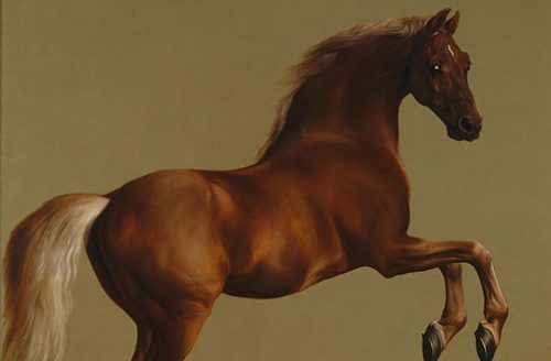 Lecture by Dr Ann Ferguson on George Stubbs & The Hunter Brothers